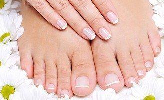 защитные функции кожных покровов