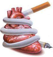 рак бронхов, гортани, лёгких, полости рта, трахеи