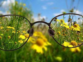 плоды облепихи крушиновидной, трава очанки лекарственной, цветки календулы лекарственной, прополис, стевия, мёд натуральный